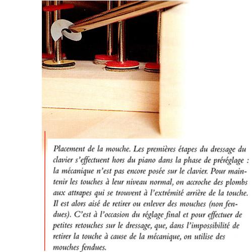 Accordeur de piano en Vendé, Deux-Sèvres et Région parisienne - L'Artisan du Piano à Fontenay-le-Comte