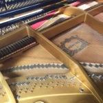 Piano quart queue Young Chang - Mécanique