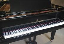 Piano quart queue YOUNG CHANG
